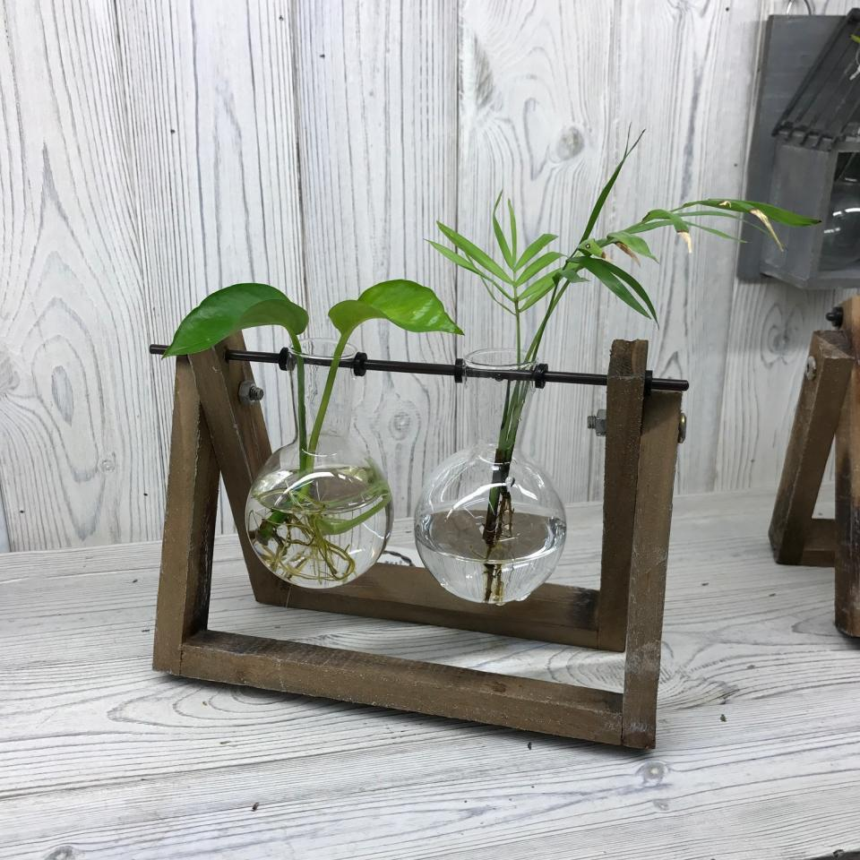 Hydroponic Home Decor Pot