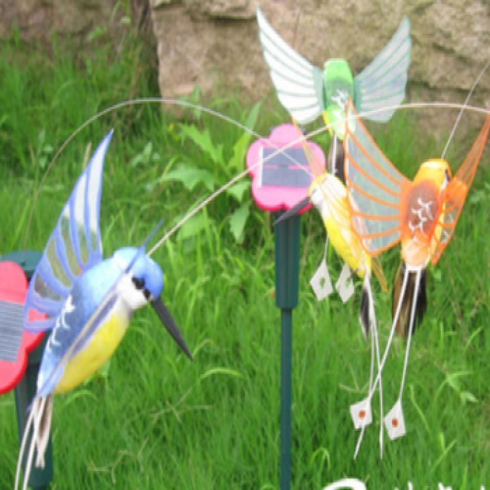 Butterfly & Bird